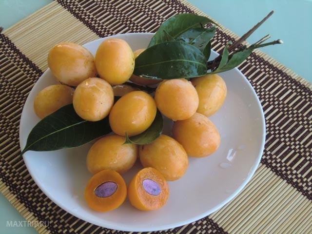 Экзотические тайские фрукты - северная слива